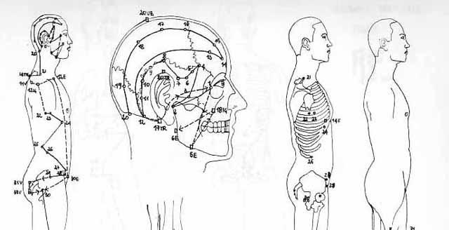 Ricerca medica Quaia v2