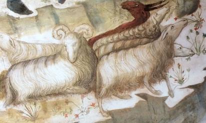 Il 2015 anno della capra